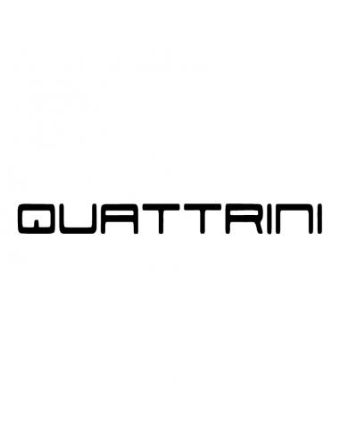 Logo Quattrini - Adesivo Prespaziato