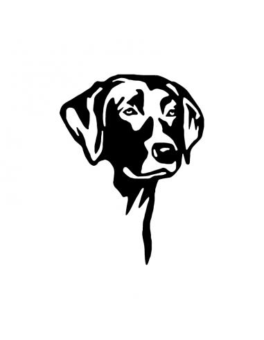 Labrador Retriever - Adesivo Prespaziato