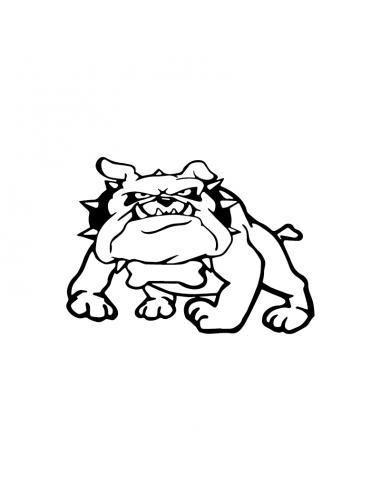 Cane Bulldog - Adesivo Prespaziato