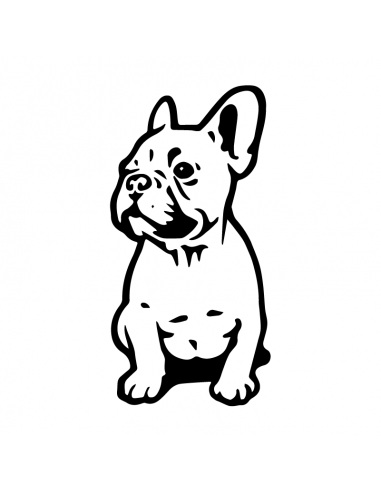 French Bulldog 1 - Adesivo Prespaziato