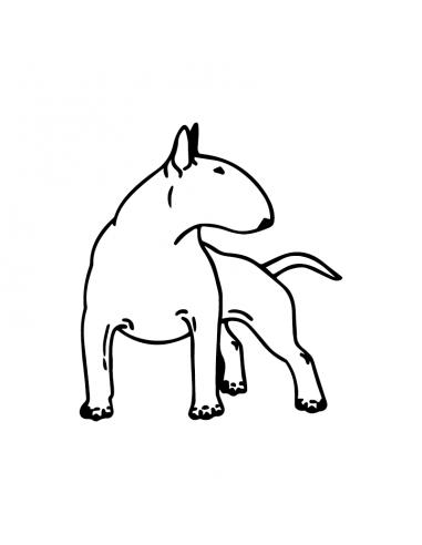 Bull Terrier 2 - Adesivo Prespaziato