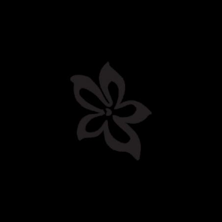 Paul Frank cresta - Adesivo Prespaziato
