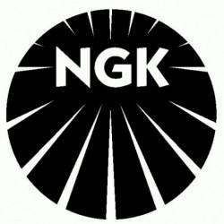 NGK - Adesivo Prespaziato