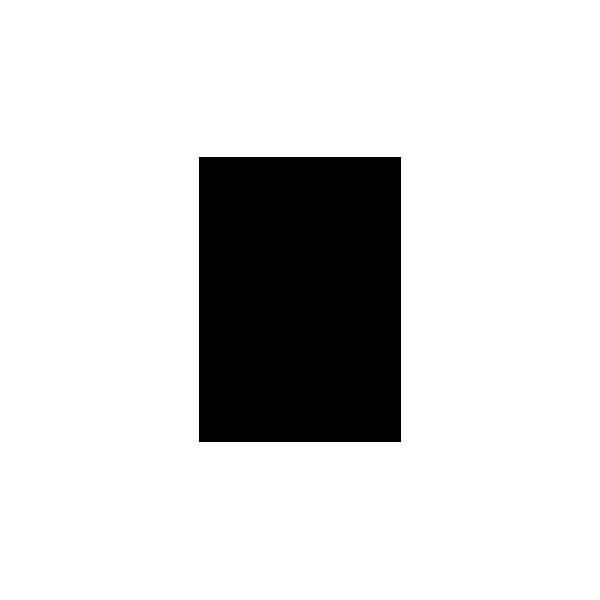 adesivo puma