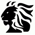 Pippistrelli - Adesivo Prespaziato