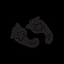 Squalo 1 - Adesivo Prespaziato