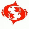 Logo BMW - Adesivo Prespaziato