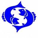Logo Citroen 1 - Adesivo Prespaziato